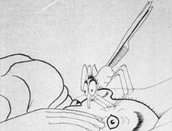 mccay-mosquito9a