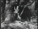 vlcsnap-2011-01-11-17h39m53s49