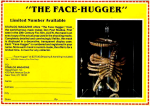 Alien Face-Hugger Model