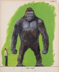 Willis O'Brien Frankenstein vs King Kong 2